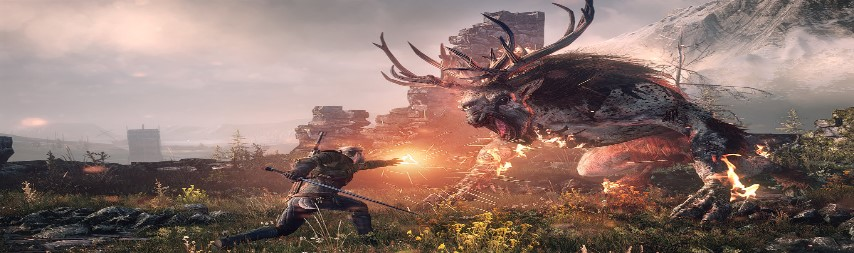 Area Dalam Game The Witcher III